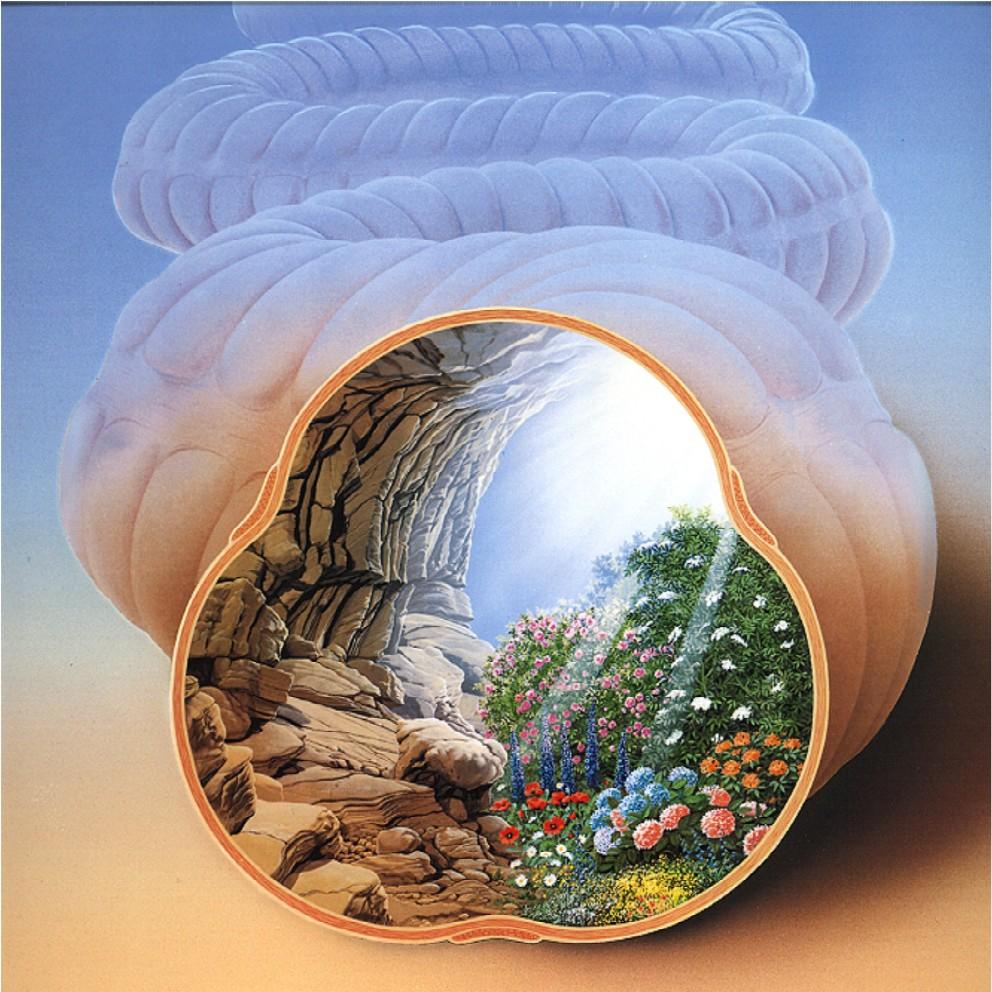 Gesunder Darm - Naturheilpraxis Wiertz Kamp-Lintfort